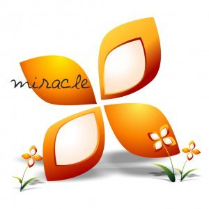Miracle inc.
